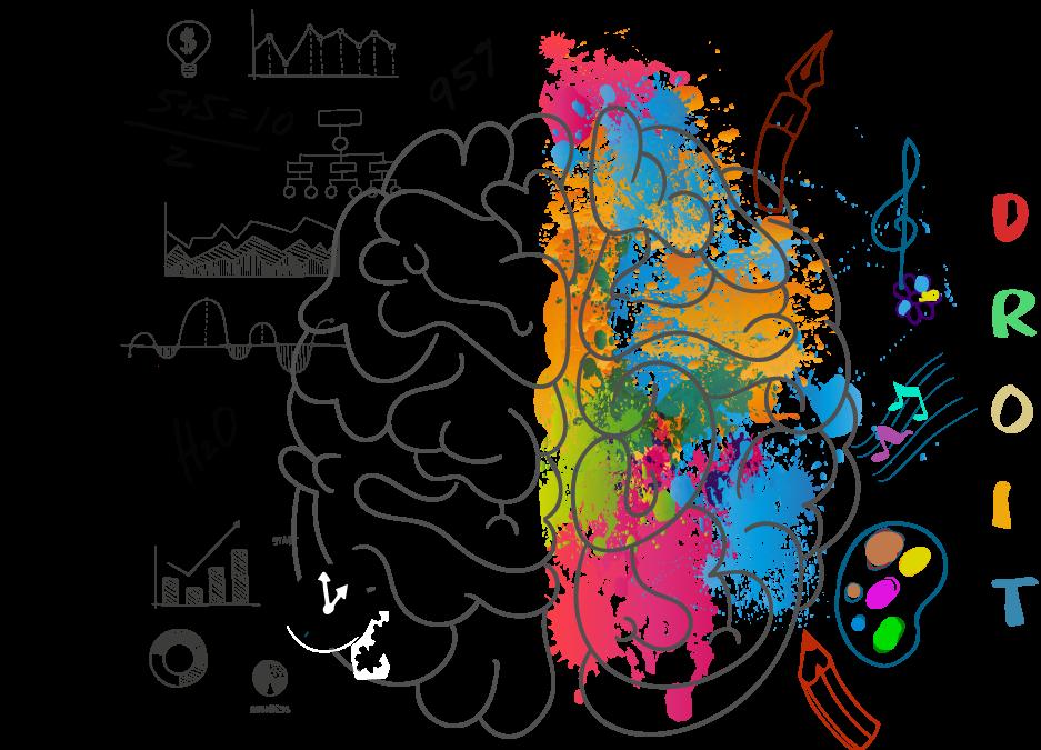 fonctionnement cerveau hypnose